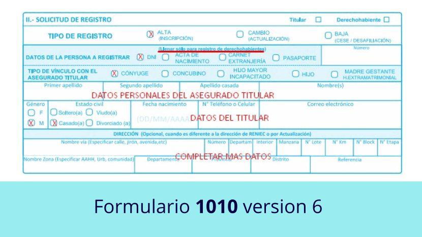 Formulario 1010 versión 6